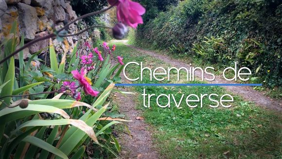 Thumbnail Chemins de traverse - Best of passions